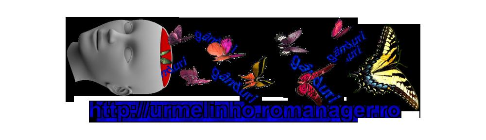 Blogul lui Romică